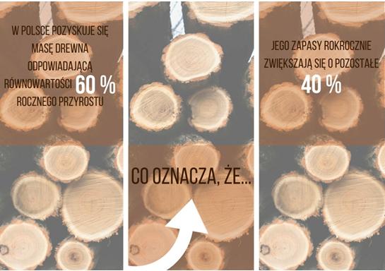 Grafika 5 drewno (Copy)